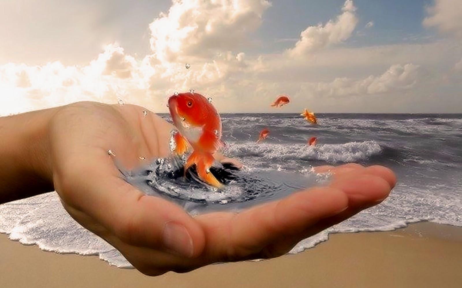 Поздравление в воде